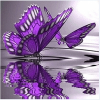 2019 latest hot pop diamond paintingButterfly Flowers Diamond Embroidery 5D Diamond DIY Painting Cross Stitch Crafts
