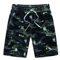 2019 new arrivals Summer Beach Shorts fashion printed quick dry board shorts M-3XL drop shipping AYG216
