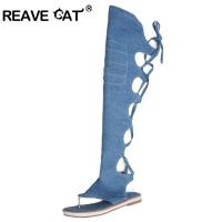 REAVE CAT Women thong shoes Denim summer boots Low heels Over the knee high boots Woman black blue beige shoes Clip toe Hot A704